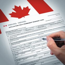 Federal Submission on Work Permits